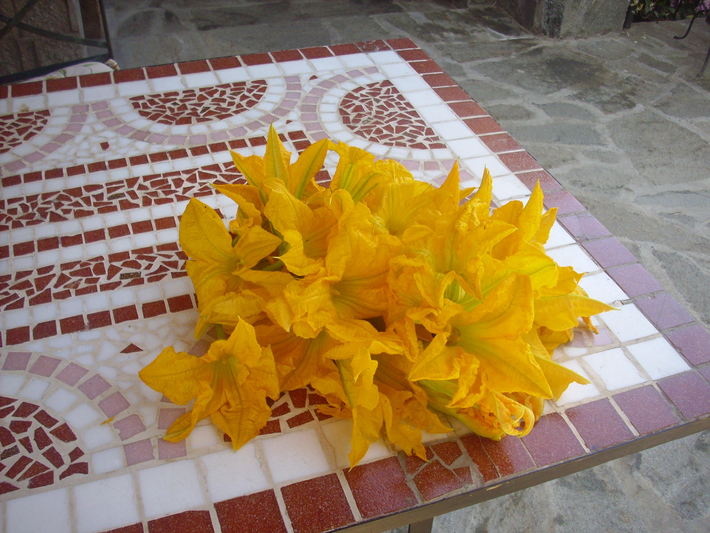 fiori-di-zucca-041.JPG