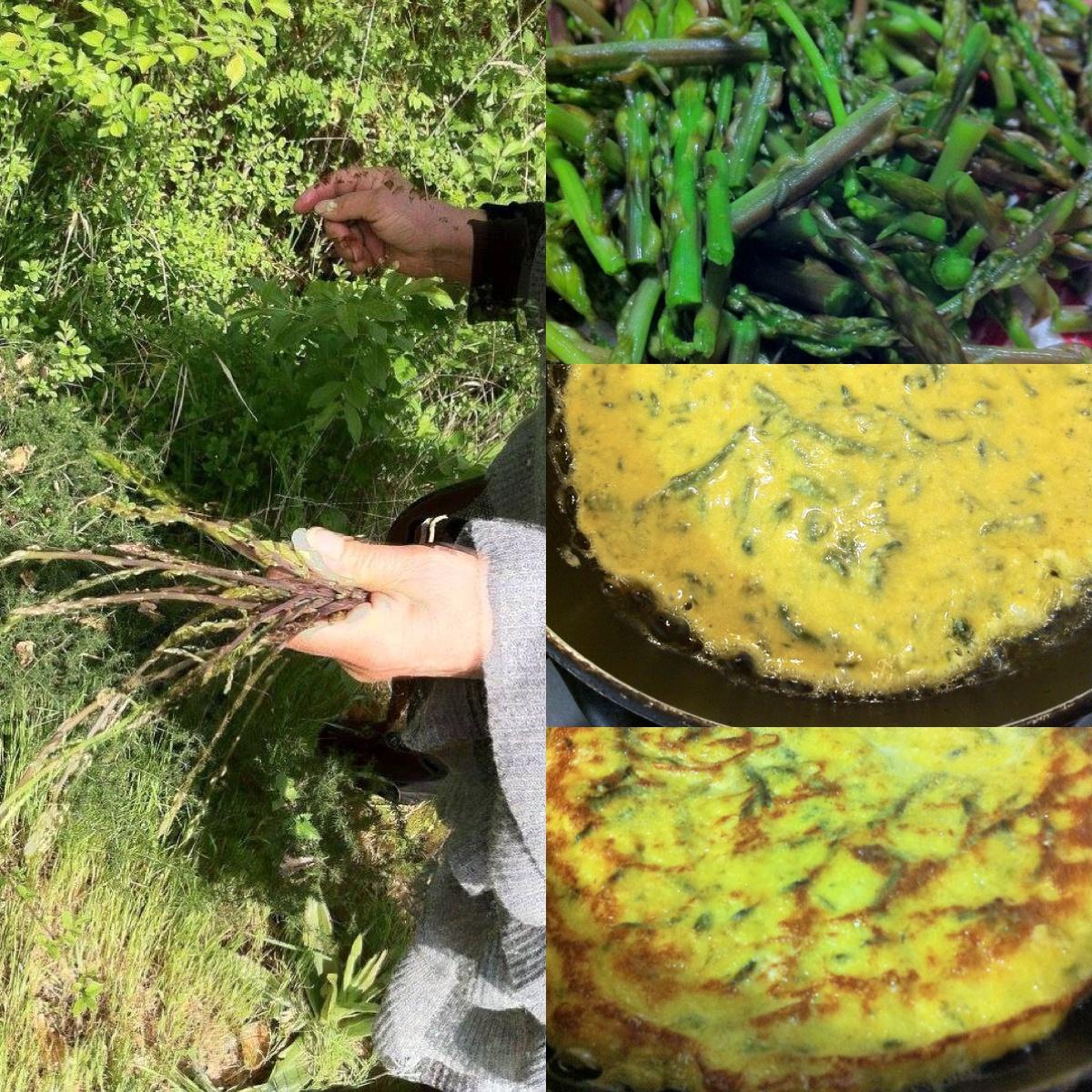 frittata-agli-asparagi-selvatici-3.JPG
