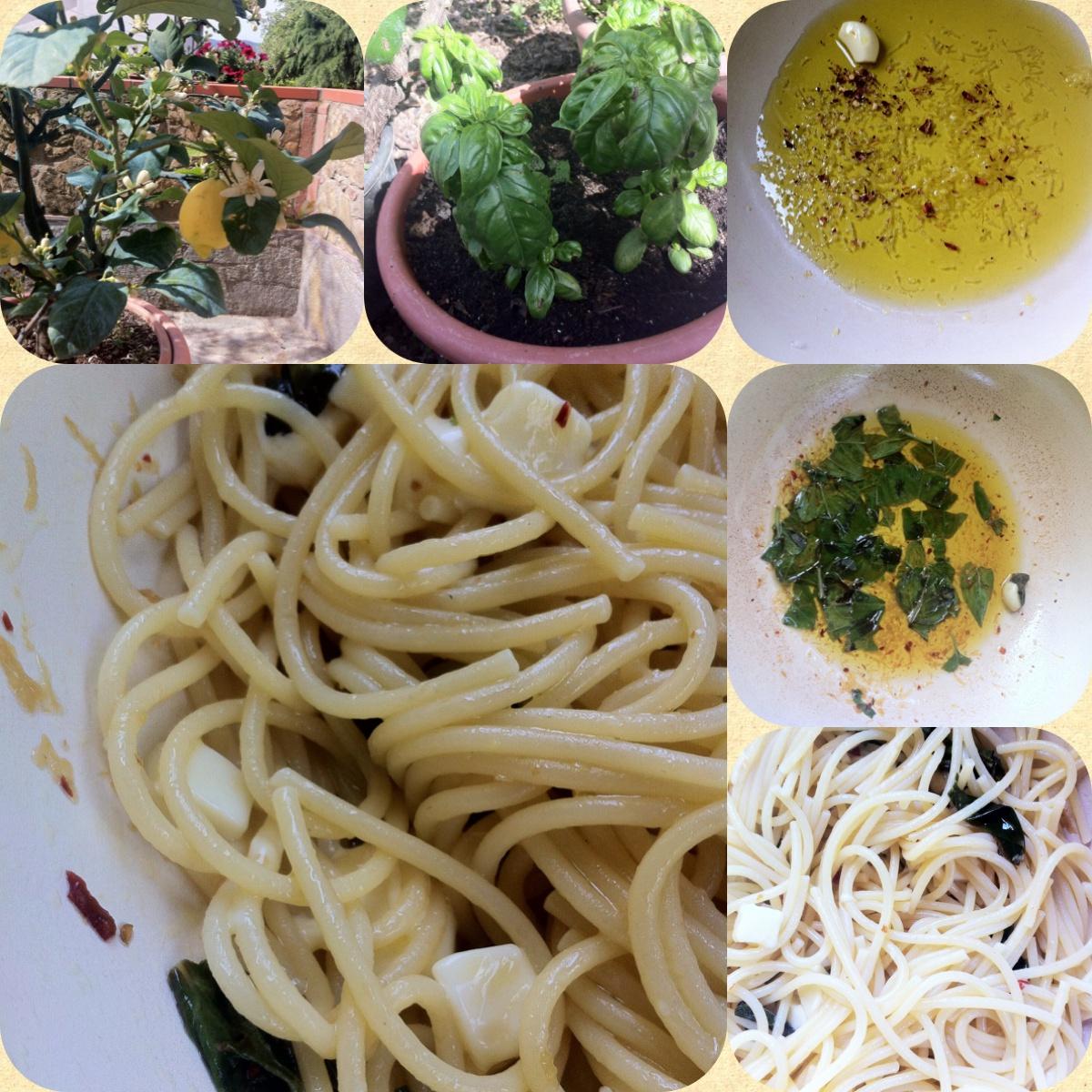 spaghetti-sugo-basilico.JPG